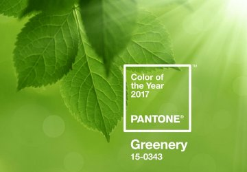 Image of the colour of the year 2017