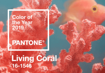 2019 is the year of the so-called Living Coral, which is in the colour scale under the Pantone number 16-1546.